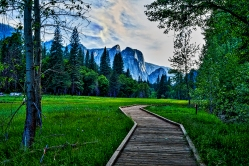 Yosemite Valley Floor 2016